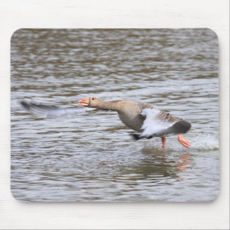 Greylag Geese Mouse Pad