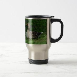 Greylag Goose, Anser anser, Graugans Travel Mug