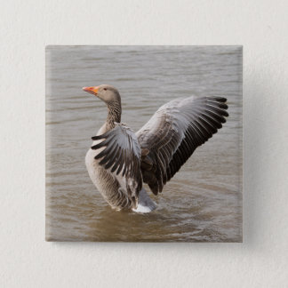 Greylag Goose Button