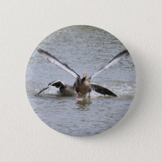 Greylag Goose Button