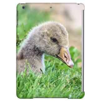 Greylag Goose Gosling iPad Air Case