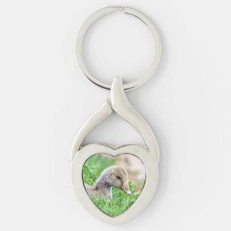 Greylag Goose Gosling Keychain