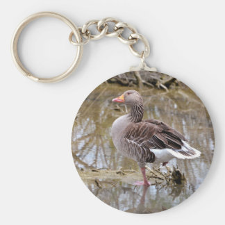 Greylag goose in water keychain