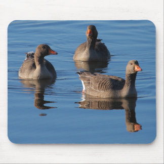 Greylag Goose Mouse Pad