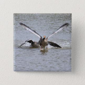 Greylag Goose Pinback Button