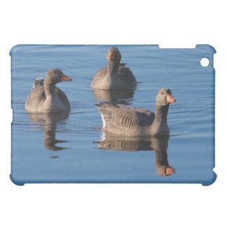 Greylag Goose Trio iPad Mini Cases