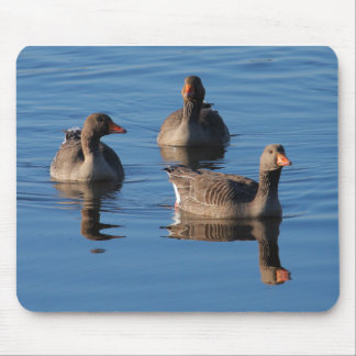 Greylag Goose Trio Mouse Pad