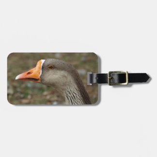 Greylag Swan Goose Cross Luggage Tag