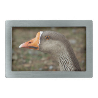 Greylag Swan Goose Cross Rectangular Belt Buckle