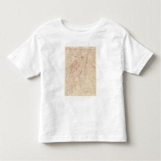Greylock, Massachusetts Toddler T-shirt