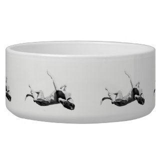 Greyt Greyhound Roaching Pet Bowl