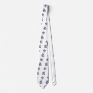 Gridiron - kicked in the grass, tony fernandes tie