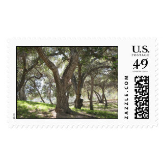Griffith Park - postage stamp