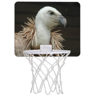 Griffon Vulture Mini Basketball Backboard