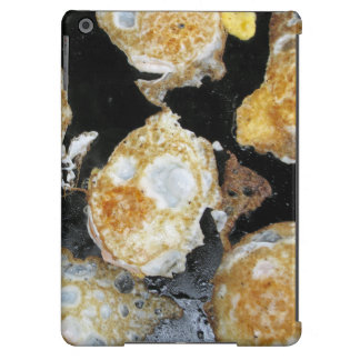 Grilled Eggs Case For iPad Air