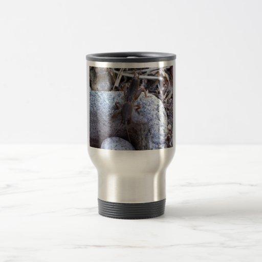Grillo de topo en la piedra tazas de café