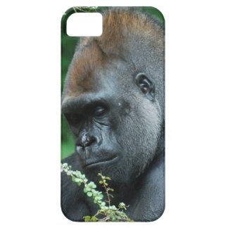 Grim Gorilla iPhone 5 Cover