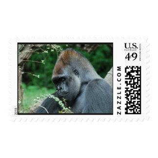 Grim Gorilla Postage Stamp