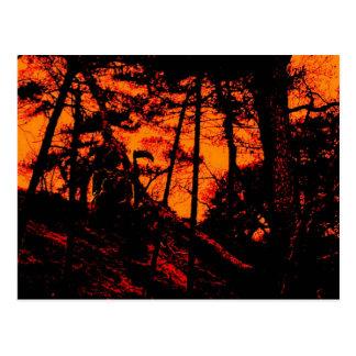 Grim Reaper in Scary Orange Lit Forest Postcard