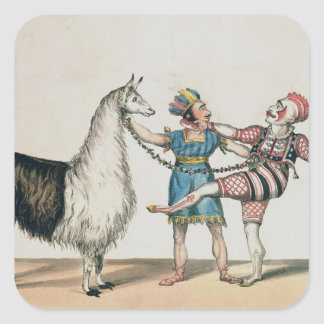Grimaldi and the Alpaca, in the Popular Pantomime Square Sticker