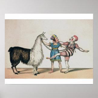 Grimaldi y la alpaca en la pantomima popular posters