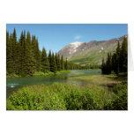 Grinnell Creek at Glacier National Park Card