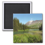 Grinnell Creek at Glacier National Park Magnet