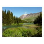 Grinnell Creek at Glacier National Park Postcard