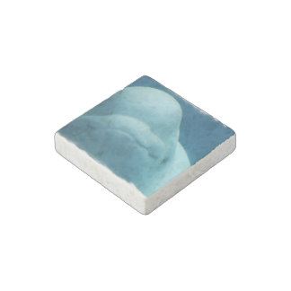 Grinning Beluga Whale Stone Magnet