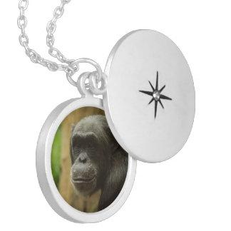 grinning chimp round locket necklace