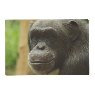 grinning chimp laminated place mat