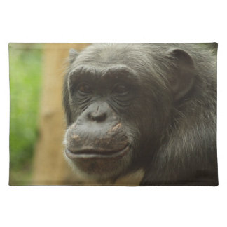 grinning chimp cloth placemat