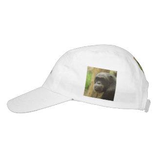grinning chimp headsweats hat