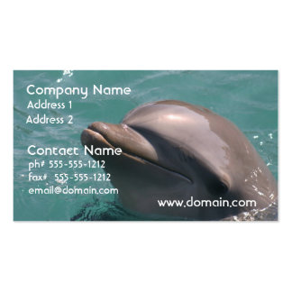 Grinning Dolphin Business Cards