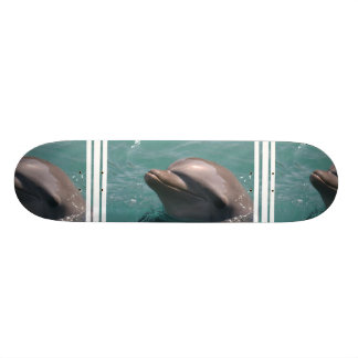 Grinning Dolphin Skateboard