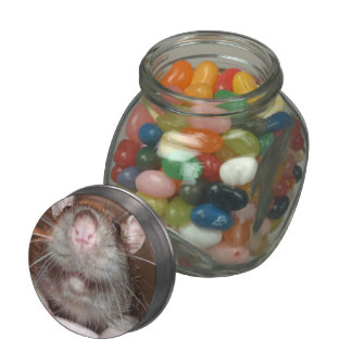 grinning rat candy tin jelly belly candy jar