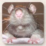 grinning rat cork coasters