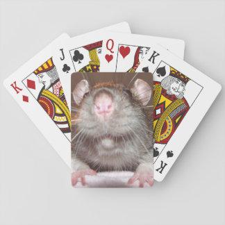 grinning rat playing cards