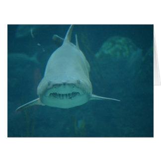 Grinning Shark Greeting Cards
