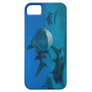 Grinning Shark iPhone 5 case