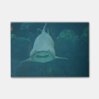 Grinning Shark Post-it® Notes