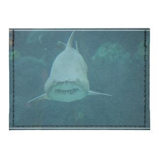 Grinning Shark Tyvek® Card Wallet