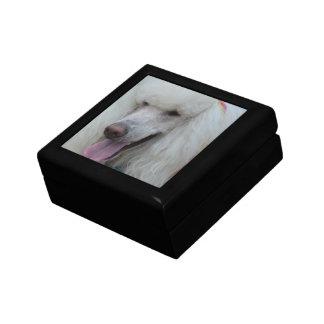Grinning White Standard Poodle Trinket Box