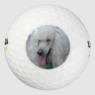 Grinning White Standard Poodle Golf Balls