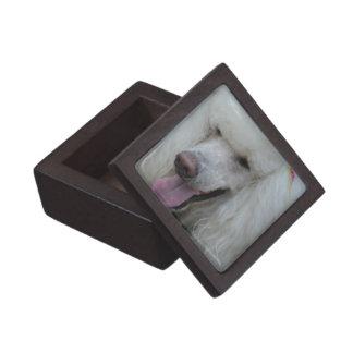 Grinning White Standard Poodle Premium Keepsake Boxes