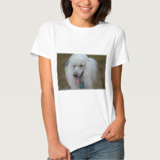 Grinning White Standard Poodle Tee Shirt