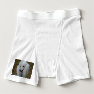 Grinning White Standard Poodle Boxer Briefs