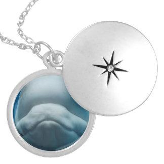 Grinning White Whale Round Locket Necklace