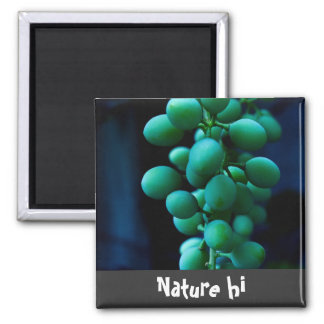 grip on grapes magnet