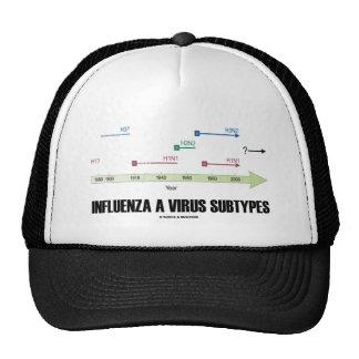 Gripe subtipos de un virus (medicina de la salud) gorro de camionero